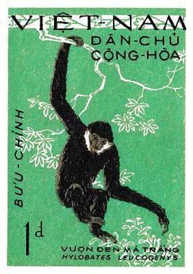 Ape Digital Art - 1961 Vietnam Gibbon Postage Stamp by Retro Graphics