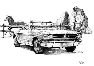 Automotive Drawing - 1964.5 Mustang  by Roland Miguel