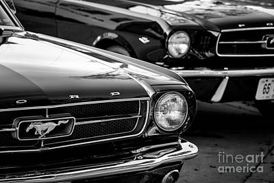 Photograph - 1965 Mustangs by Dennis Hedberg