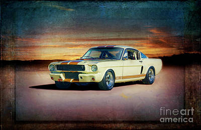 Photograph - 1966 Shelby Gt350h by Stuart Row