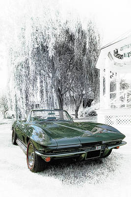 Photograph - 1967 Corvette Convertible by Susan Rissi Tregoning