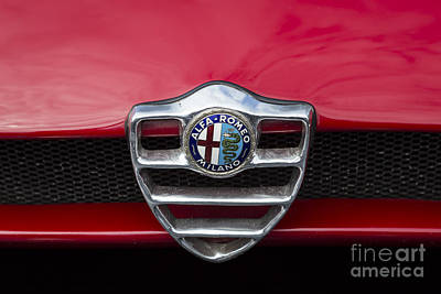Photograph - 1968 Alfa Romeo Tipo 33 Grille by Dennis Hedberg