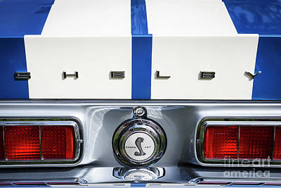 Photograph - 1968 Shelby Mustang by Dennis Hedberg