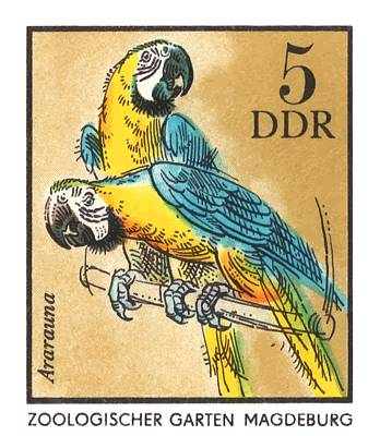 Macaw Wall Art - Digital Art - 1975 East Germany Zoo Macaws Postage Stamp by Retro Graphics
