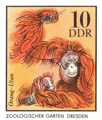 Orangutan Wall Art - Digital Art - 1975 East Germany Zoo Orangutan Postage Stamp by Retro Graphics