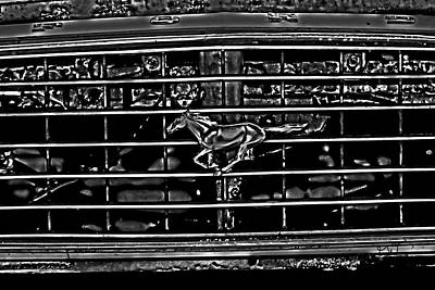 Photograph - 1977 Mustang Grill by Gina O'Brien