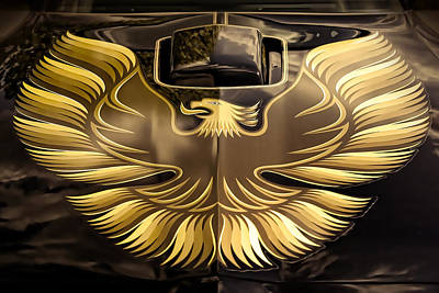 Animals Royalty-Free and Rights-Managed Images - 1979 Pontiac Trans Am  by Gordon Dean II