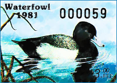 Painting - 1981 Missouri Waterfowl Stamp by Lanjee Chee