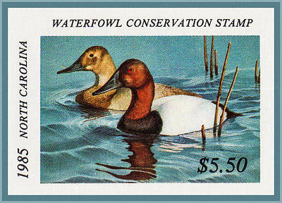 Painting - 1985 North Carolina Waterfowl Stamp by Lanjee Chee