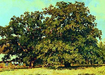 Nature Painting - Nature Landscape Artwork by Edna Wallen