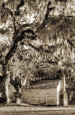 Live Oaks Photograph - 19th Century Slave House by Dustin K Ryan