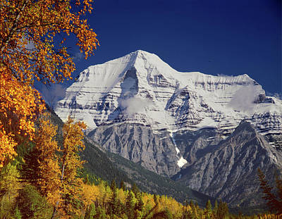 Photograph - 1m2440 Mt. Robson In Fall by Ed Cooper Photography
