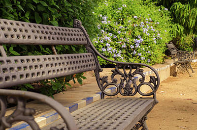 Photograph - A Bench In The Park by Andrea Mazzocchetti