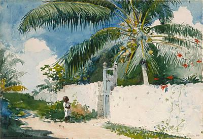 Winslow Homer Drawing - A Garden In Nassau by Winslow Homer
