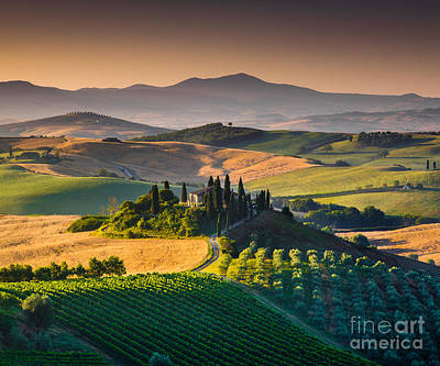 Photograph - A Morning In Tuscany by JR Photography