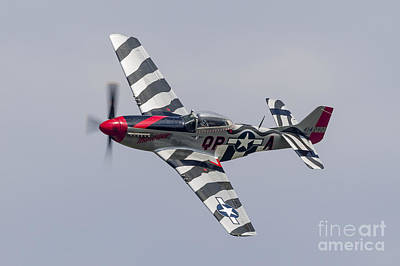 Landmarks Royalty Free Images - A P-51 Mustang Flies By At Willow Run Royalty-Free Image by Rob Edgcumbe