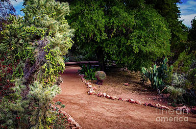 Photograph - A Walk In The Park by Jon Burch Photography