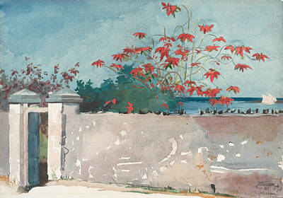 Realist Drawing - A Wall, Nassau by Winslow Homer