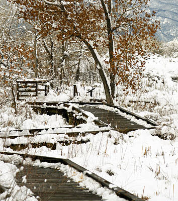 Snow Photograph - A Winter's Day by Marilyn Hunt