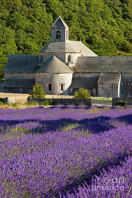 Photograph - Abbaye De Senanque by Brian Jannsen