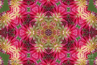 Digital Art - Ac Joy Mandala by J McCombie