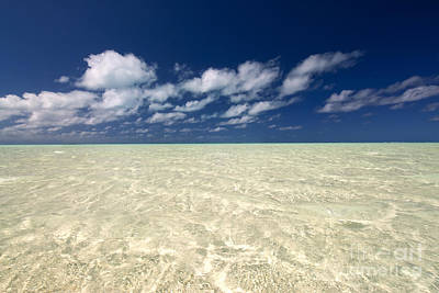 Abstract Expressionism - Aitutaki - Cook Islands  by Michael Treloar