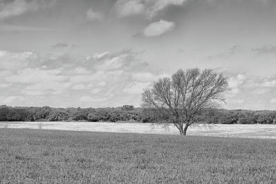 Photograph - All Alone by Victor Culpepper