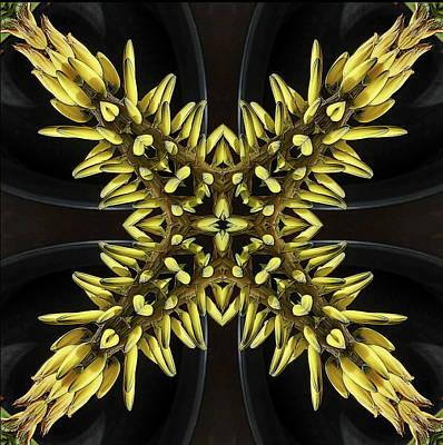 Mixed Media - Aloe Vera Flowers by Jesus Nicolas Castanon