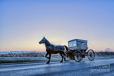 Photograph - Amish Buggy Before Dawn by David Arment