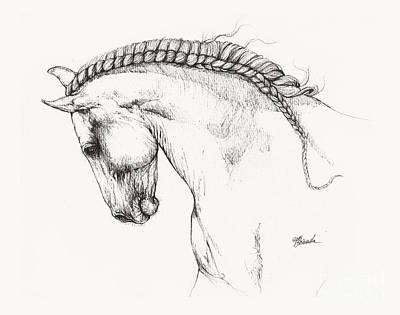Andalusian Horse Drawing - Andalusian Horse Drawing by Angel Tarantella