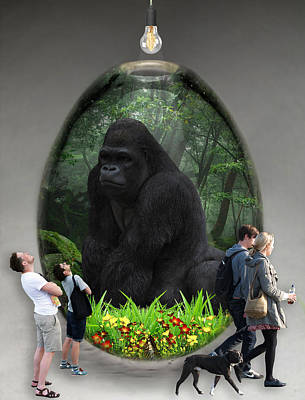 Gorilla Mixed Media - Ape Gorilla Art by Marvin Blaine