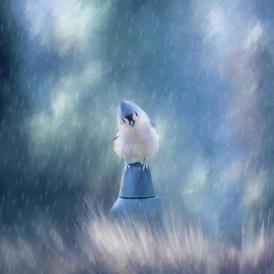 Photograph - April Showers by Cathy Kovarik