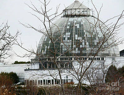 Photograph - Architecture Ar14 Greenhouse Botanical Garden Conservatory by Monica C Stovall