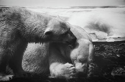 Photograph - Arctic Love by Gabriela Neumeier