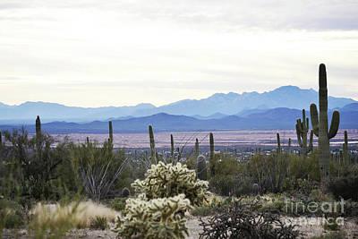 Photograph - Arizona Desert Mountain Sunset Landscape by Andrea Hazel Ihlefeld