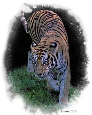 Asian Tiger Digital Art - Asian Tiger by Larry Linton