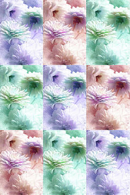 Photograph - Asters by Lali Kacharava