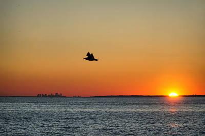 Photograph - Atlantic Sunset by Lilia D