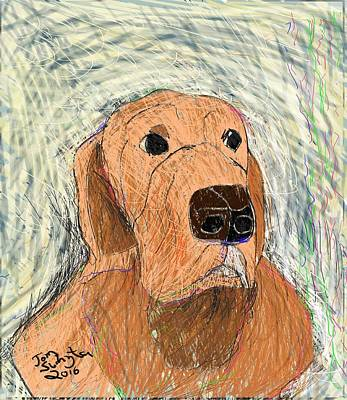 Retrievers Digital Art - Austin by Thomas Suchyta