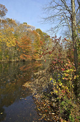 Photograph - Autumn Colors On The Canal by David Letts