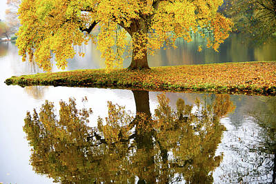 Photograph - Autumn Colours by Colin Rayner