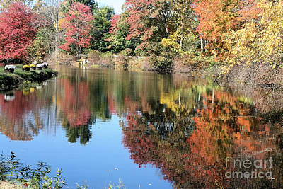 Autumn In New England Art Print by Amy Holmes