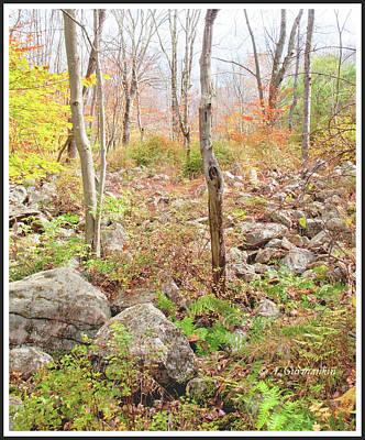 Photograph - Autumn In The Pocono Mountains, Pennsylvania by A Gurmankin