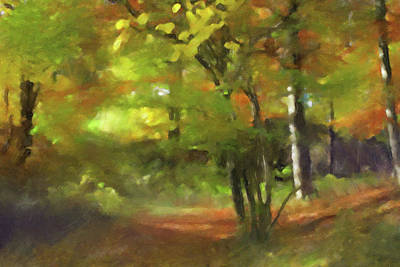 Painting - Autumn Light by Lutz Baar