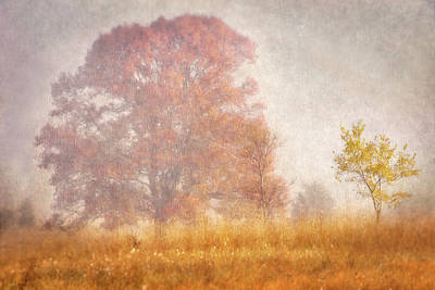 Photograph - Autumn Mist by Leda Robertson