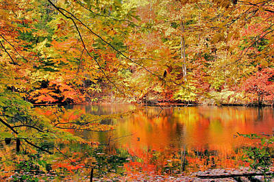Autumn Reflections Art Print by Kristin Elmquist
