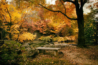 Fall Foliage Digital Art - Autumn Respite by Jessica Jenney