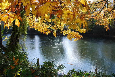 Art Print featuring the photograph Autumn by Sergey and Svetlana Nassyrov