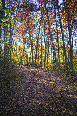 Photograph - Autumn Trail by Daniel Houghton