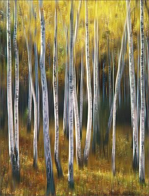 Photograph - Autumn Trees by Vladimir Kholostykh